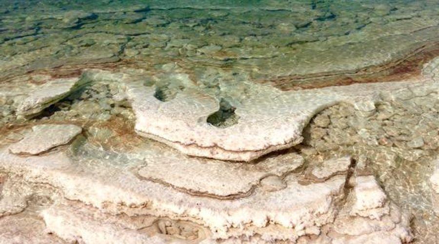 منتجع هوليداي إن البحر الميت-46 من 47 الصور