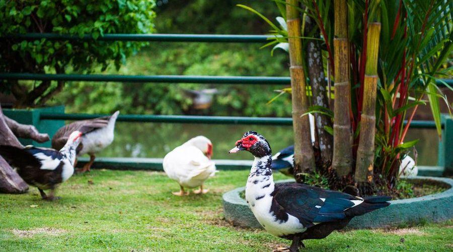 Wet Water Resort-45 of 55 photos