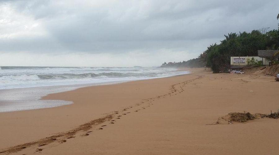 Centara Ceysands Resort & Spa Sri Lanka-43 of 44 photos