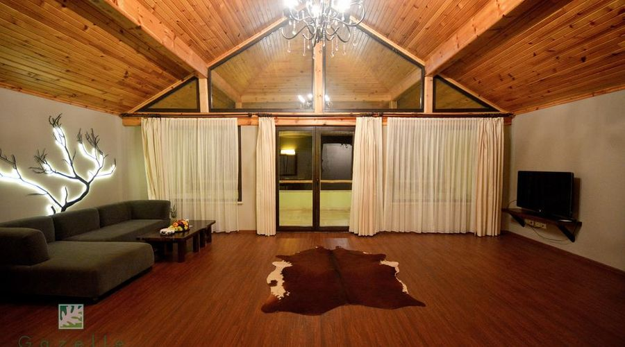 Gazelle Resort & Spa-9 of 32 photos