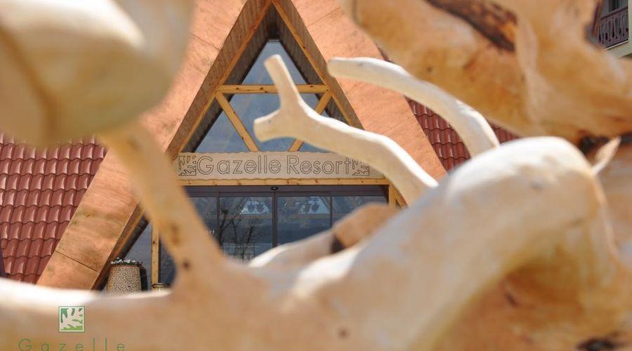 Gazelle Resort & Spa-17 of 32 photos