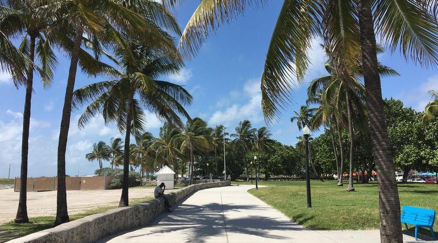 The Miami Beach EDITION-4 of 66 photos