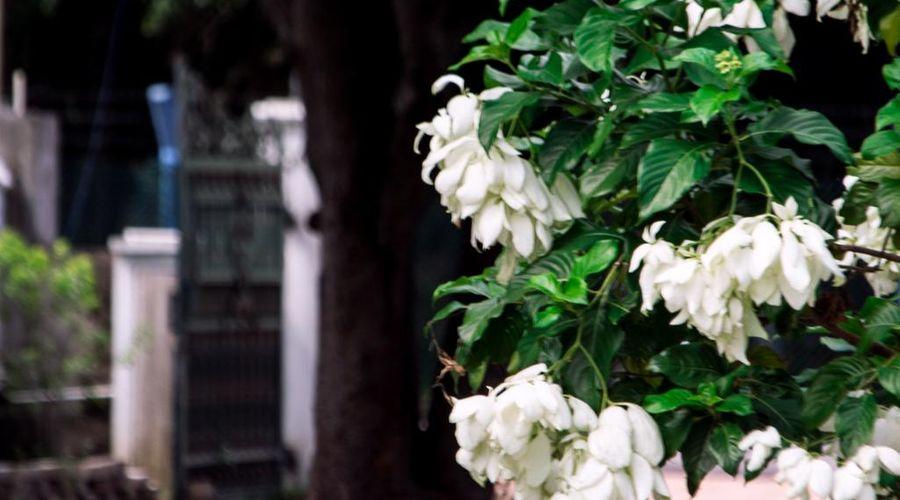 إيمباريان هوتل-48 من 48 الصور