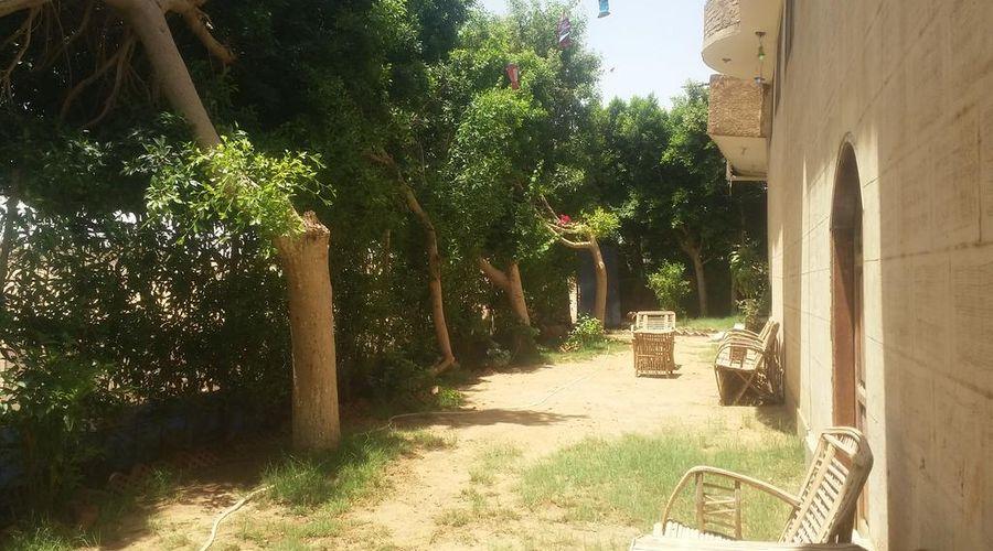 سقارة فيو جست هاوس-3 من 47 الصور