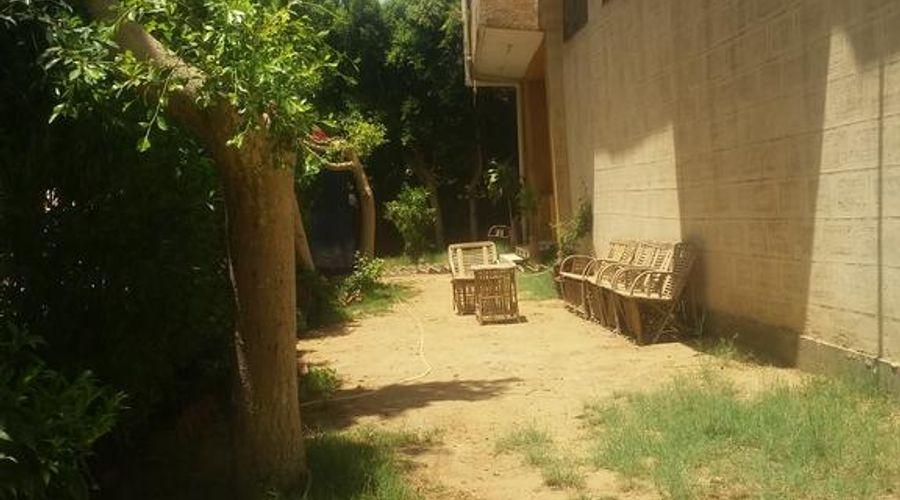 سقارة فيو جست هاوس-9 من 47 الصور