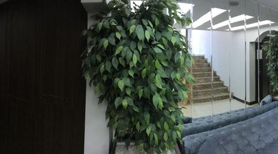 ماي هوم أوزونجول-10 من 44 الصور