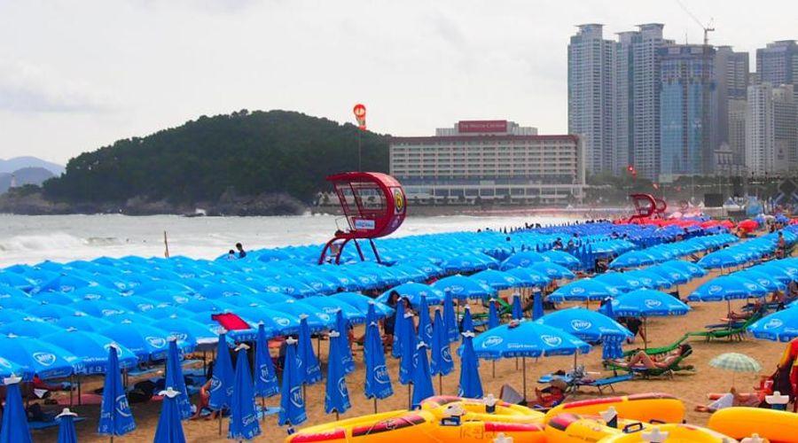 Novotel Ambassador Busan-45 of 52 photos
