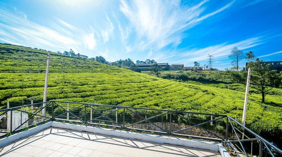 Villa Tea Fields-29 of 52 photos