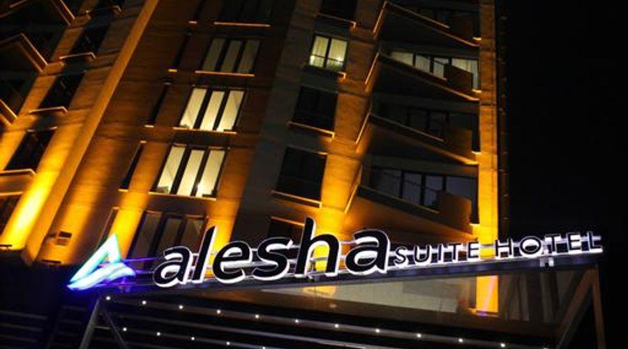 Alesha Suite-39 of 46 photos