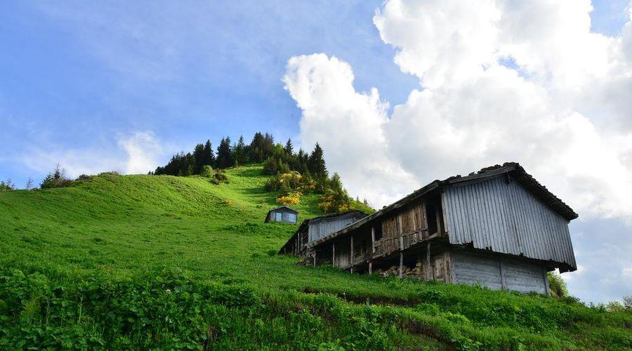 Inan Kardesler Bungalow Motel-5 of 31 photos