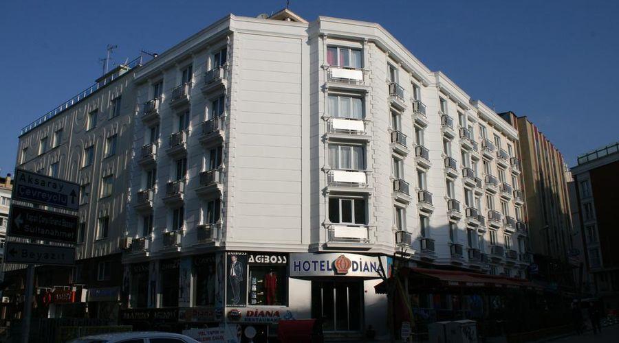 فندق ديانا-1 من 15 الصور