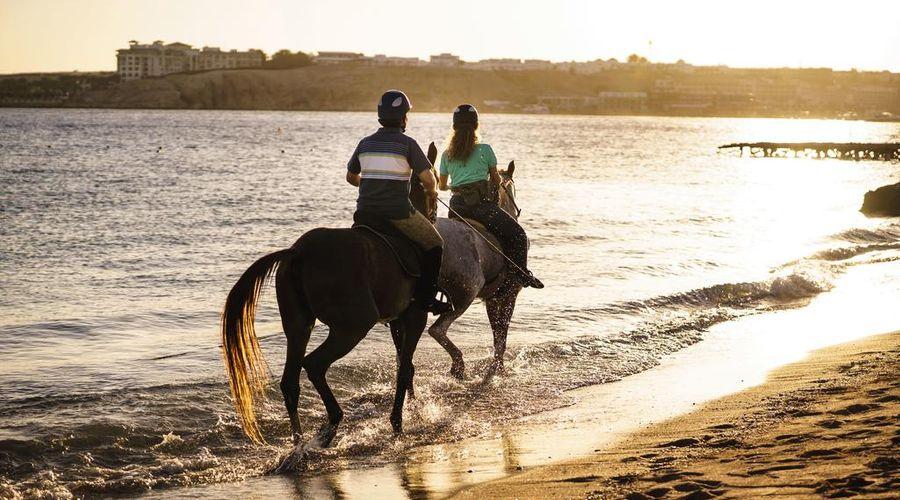 Movenpick Resort Sharm El Sheik Naama Bay-21 of 35 photos