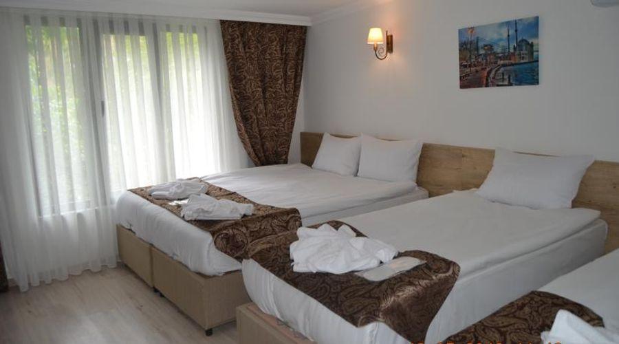 فندق وأجنحة لورين-27 من 53 الصور