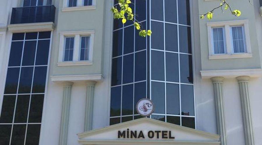 Gold Mina Hotel-2 of 45 photos