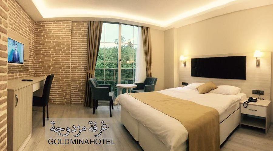 Gold Mina Hotel-20 of 45 photos
