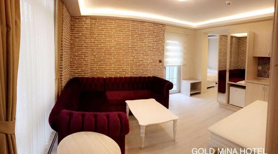 Gold Mina Hotel-35 of 45 photos