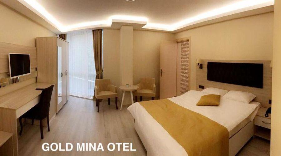 Gold Mina Hotel-37 of 45 photos